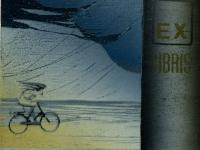dutch-cyclist